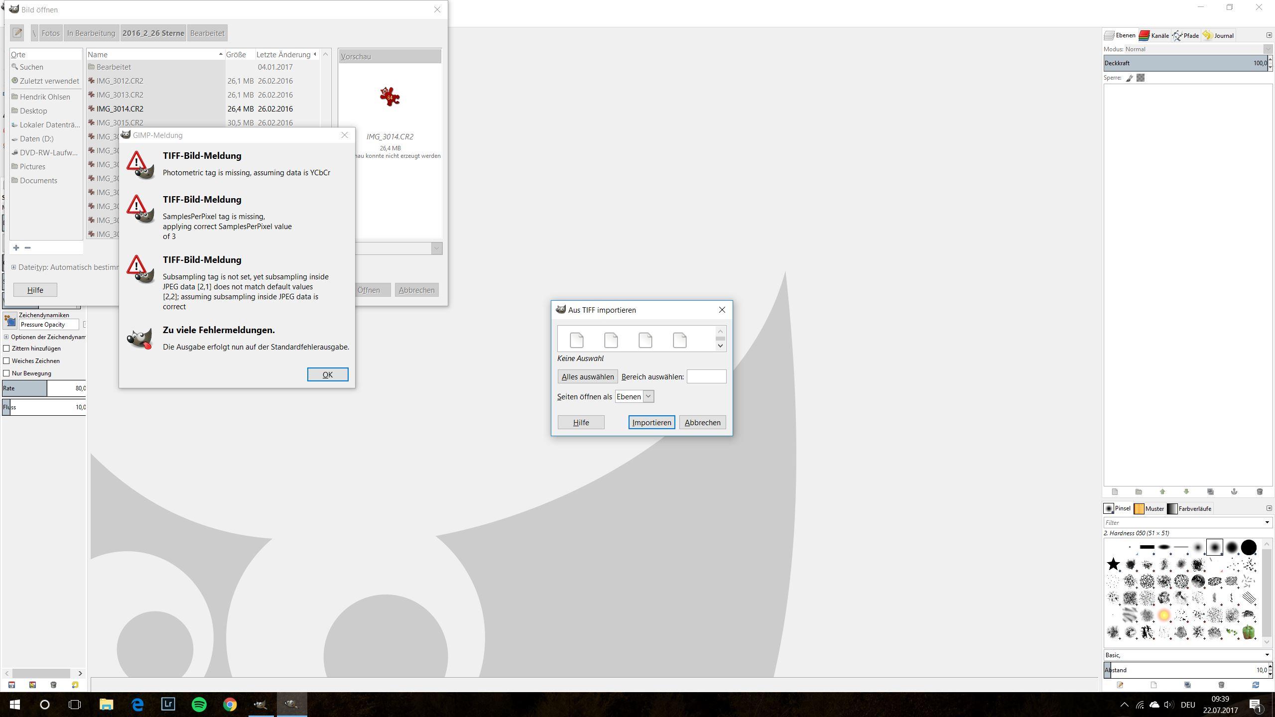 Der Versuch, eine RAW-Datei in Gimp zu öffnen