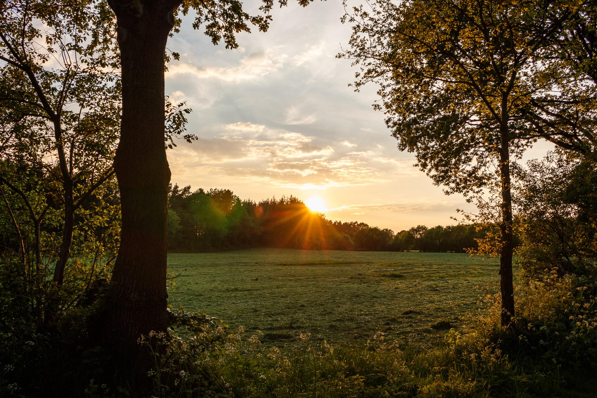 Das Licht der goldenen Stunde ist sehr warm