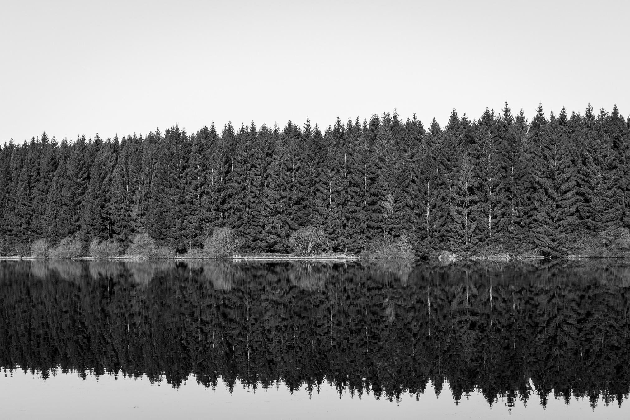 Ist die Aufnahme in Schwarz-Weiß, lenken keine von den Formen und Strukturen ab