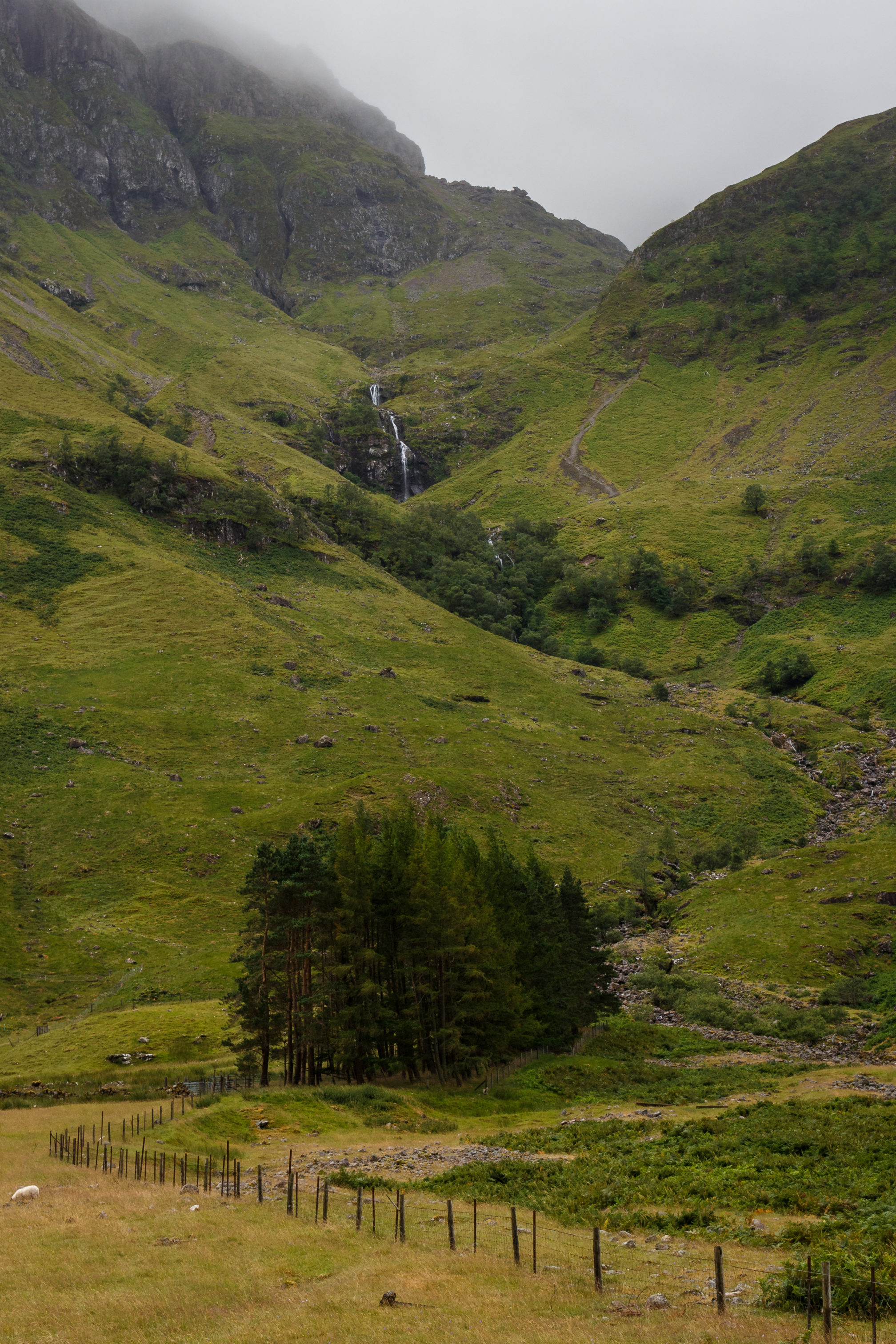 Ein Schaf, etwas Nebel, ein Berg und ein Wasserfall - Schottland kurz zusammengefasst